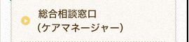 総合相談窓口(ケアマネージャー)